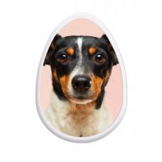 Bubble Sticker