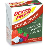 Dextro Energy - Schulstoff Forest Fruit